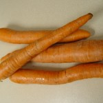 picture of carrots - storing carrots
