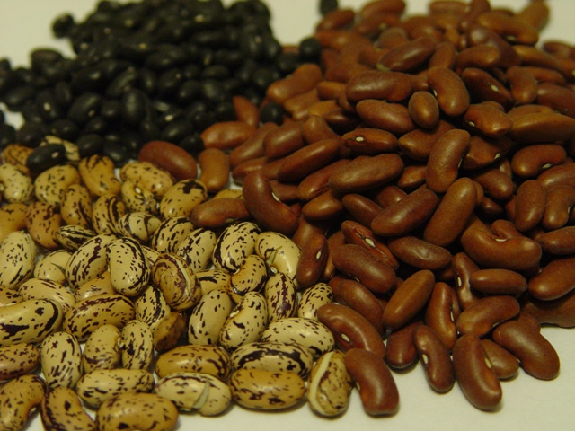picture of dried beans