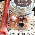 DIY Fruit Roll-ups and Fruit Leather Recipes - Baking Outside the Box